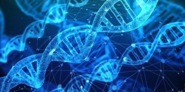 El avance de la medicina y la ciencia en el mundo